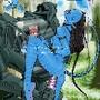 Avatar-www.superstangas.blogspot.com (17)