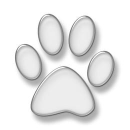 d6ca4cf2ac0182dedd559e01850cfdb1--cat-paw-print-ca