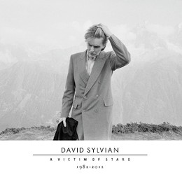 david_sylvian_victim_of_stars_2_cd.jpg