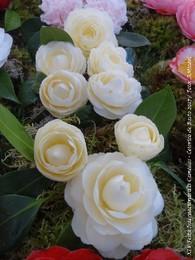 4 - Festa Internacional das Camélias - Celorico d