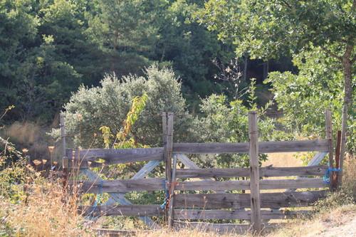 Agrochão - Vinhais