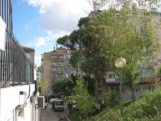 rua manuel murias