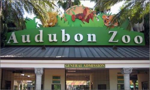Audubon Zoo 15168161_7Yssf