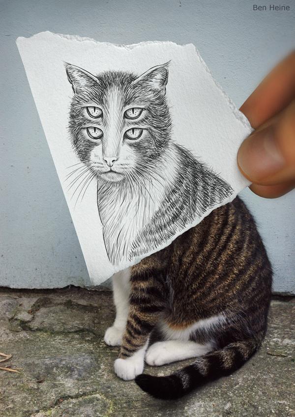 IMAGENS: Fotografias Versus Desenhos... Tens 1 preferida?  16331478_HZ8sn