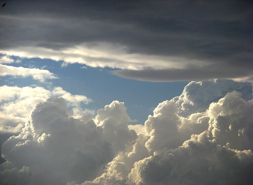 vapor celeste